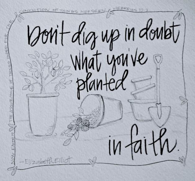 BAJ-Doodle101-Planters6-Sue Carroll