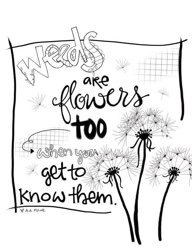 Doodle101:weeds4:SueCarroll